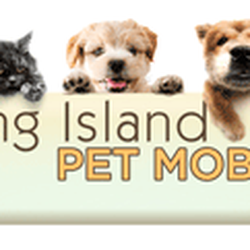 Mobile Dog Grooming Long Island