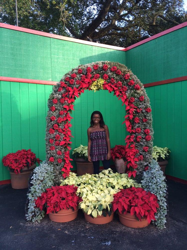 Christmas Town At Busch Gardens 92 Photos 25 Reviews