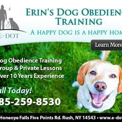 E-DOT - Pet Training - 220 Honeoye Falls Five Points Rd