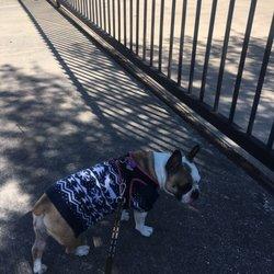 Mobile Petcare Clinic of Texas - 13 Photos & 20 Reviews