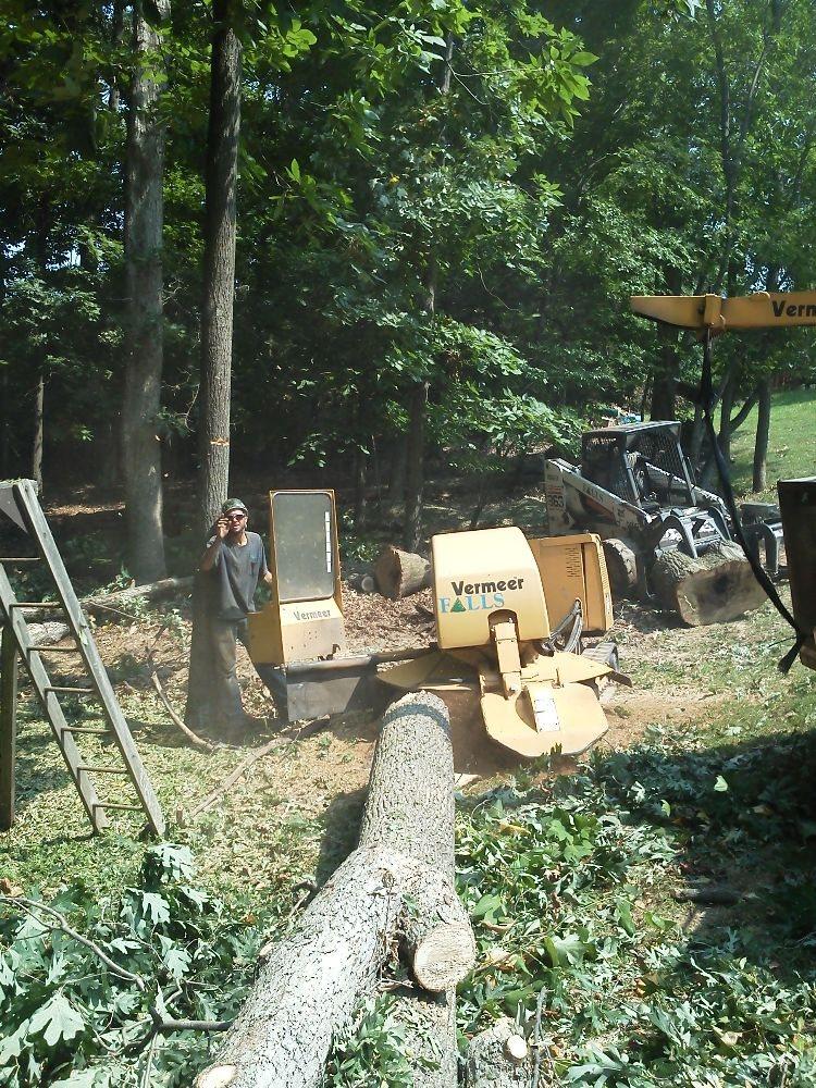 A-1 Tree Service: Chagrin Falls, OH