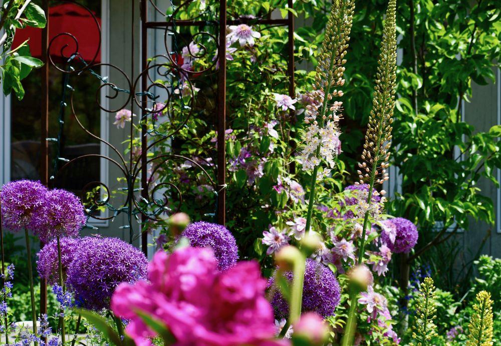 HomeHarvest, Custom Edible Gardens: 23 Dartmouth St, Arlington, MA