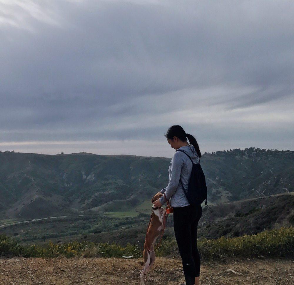 Sentier du sommet d'Aliso