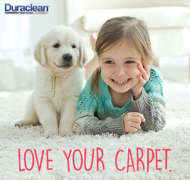 Duraclean Specialists: 808 W Maumee, Angola, IN