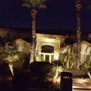 Desert Landscape Lighting