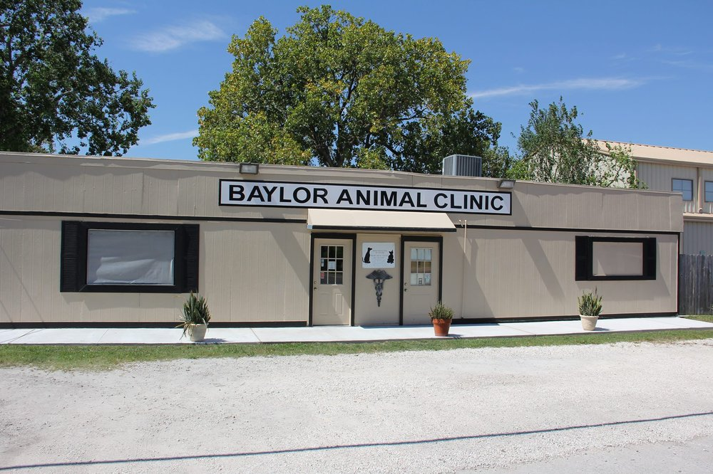 Baylor Animal Clinic: 826 Grand Ave, Bacliff, TX