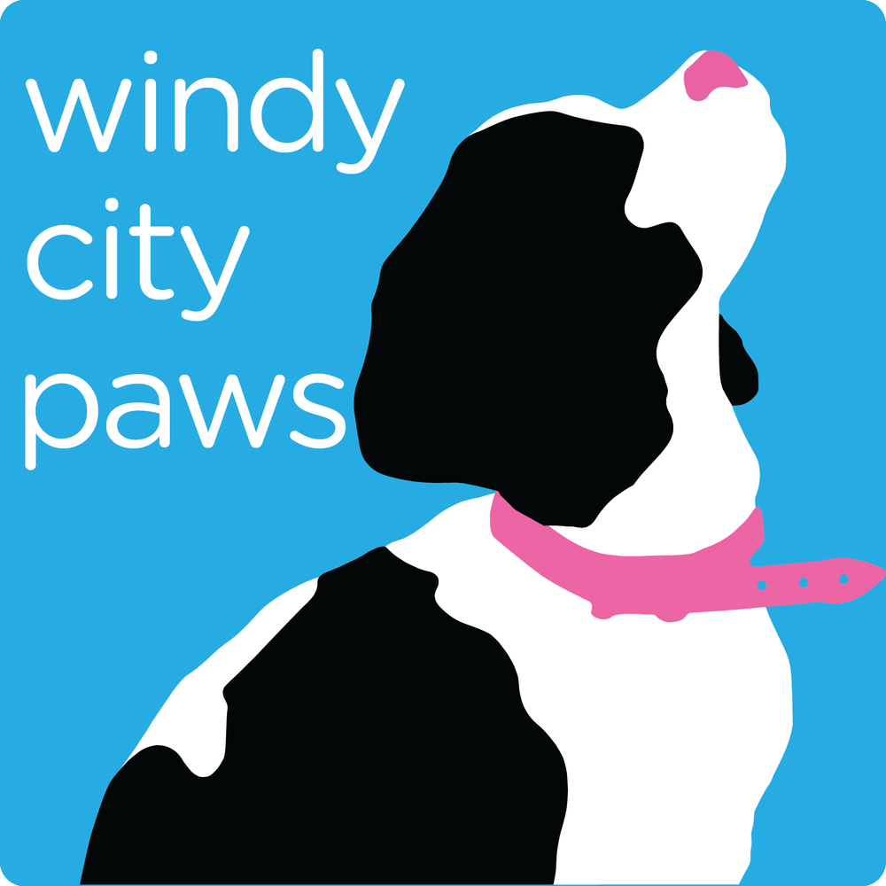 Windy City Paws