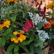 ... Photo Of Bremec On The Heights Garden Center   Cleveland Heights, OH,  United States ...