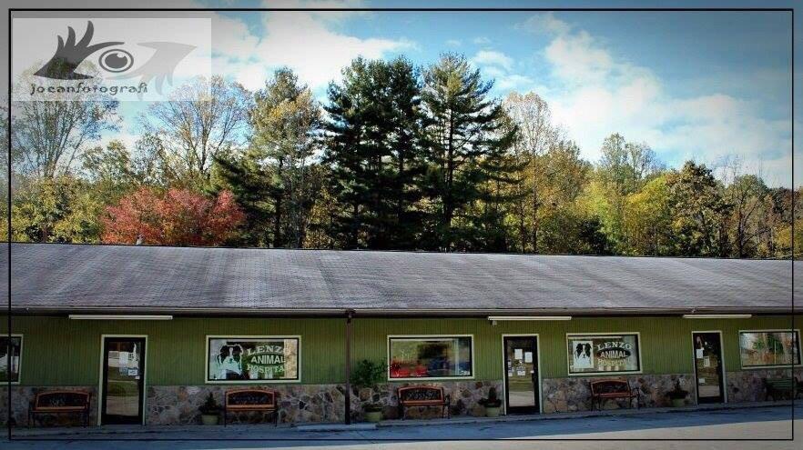 Lenzo Animal Hospital PA: 1869 Georgia Rd, Franklin, NC