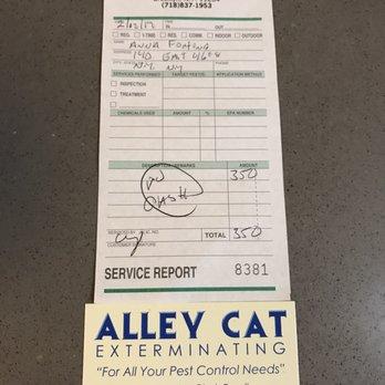 Alley Cat Exterminating 12 Photos 112 Reviews Pest Control