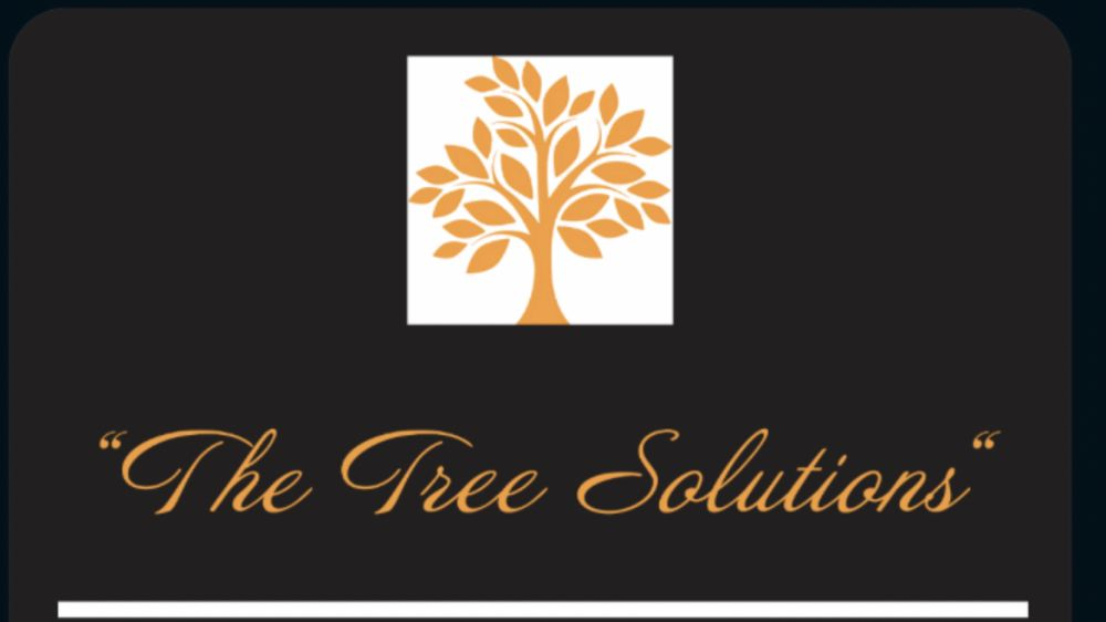 The Tree Solutions: 736 Grace Ave, Charleston, WV