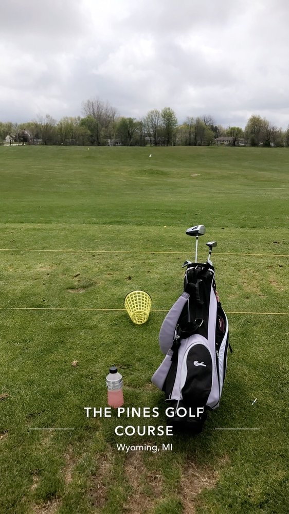 Pines Golf Course: 5050 Byron Center Ave SW, Wyoming, MI