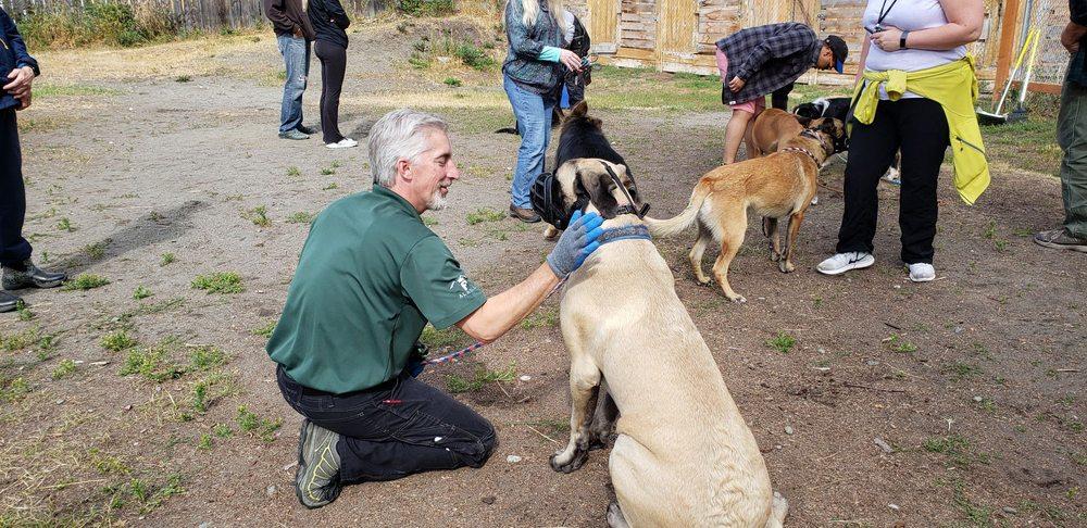 Alaska Dog Boarding & Training: 16305 E Jan Cir, Palmer, AK
