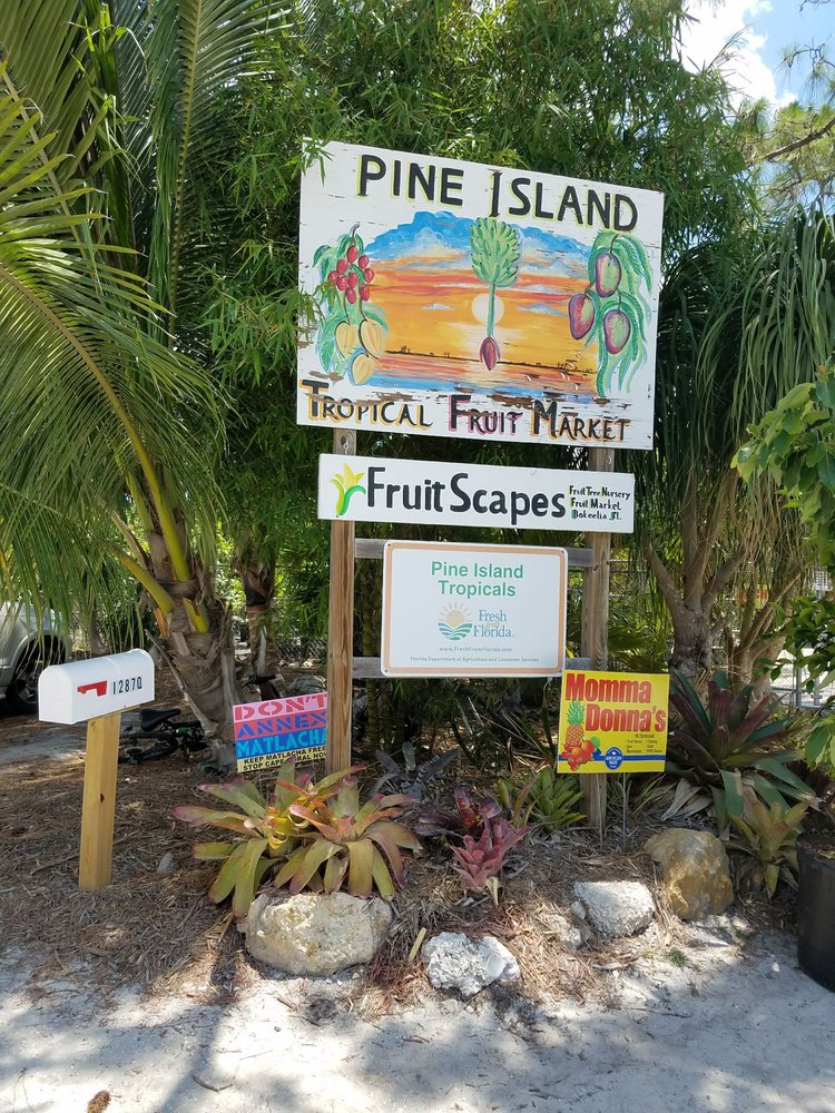 Bea's at Pine Island Tropicals Fruit Stand: 12876 Stringfellow Rd, Bokeelia, FL