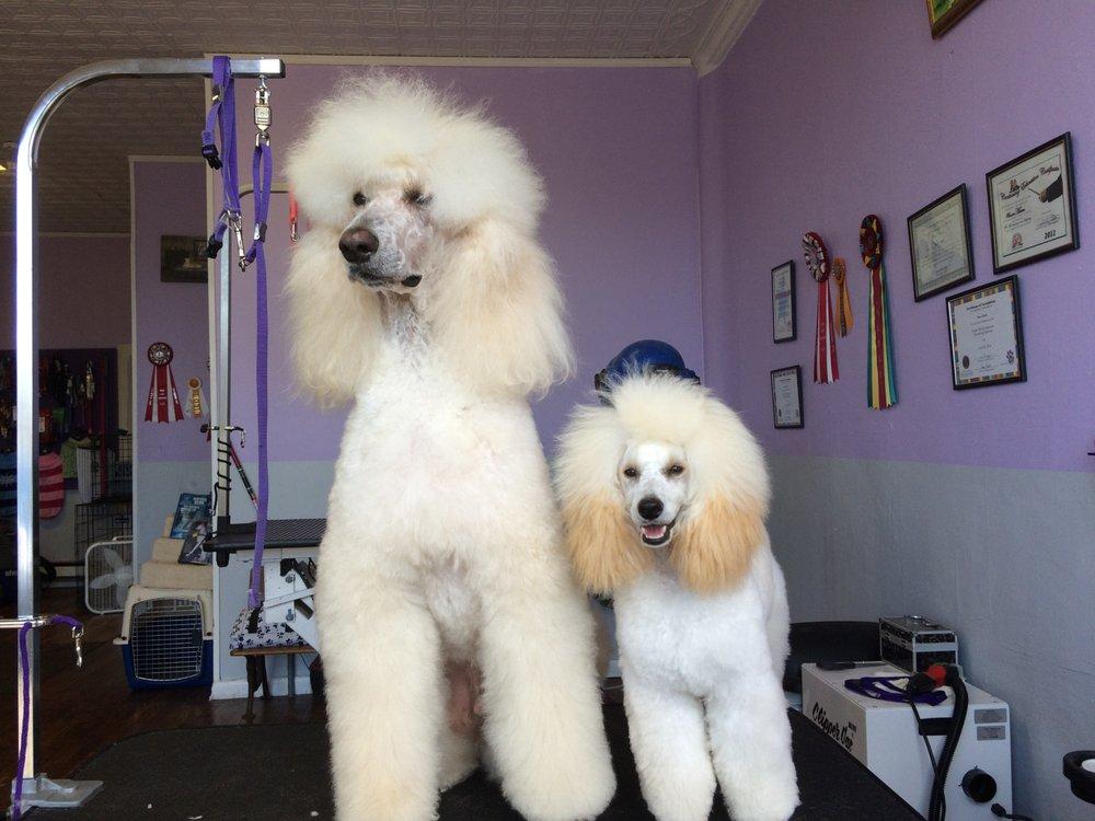 GroomStation Dog Grooming Salon: 131 E Seneca St, Sherrill, NY