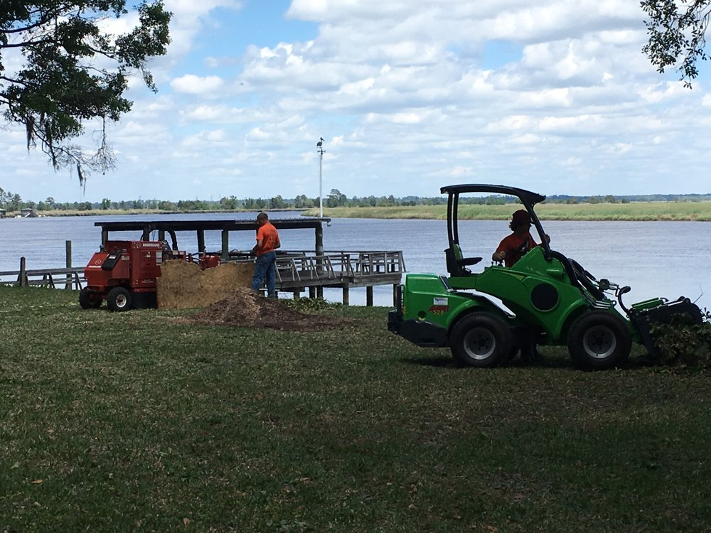 Coastal Tree Service: Richmond Hill, GA