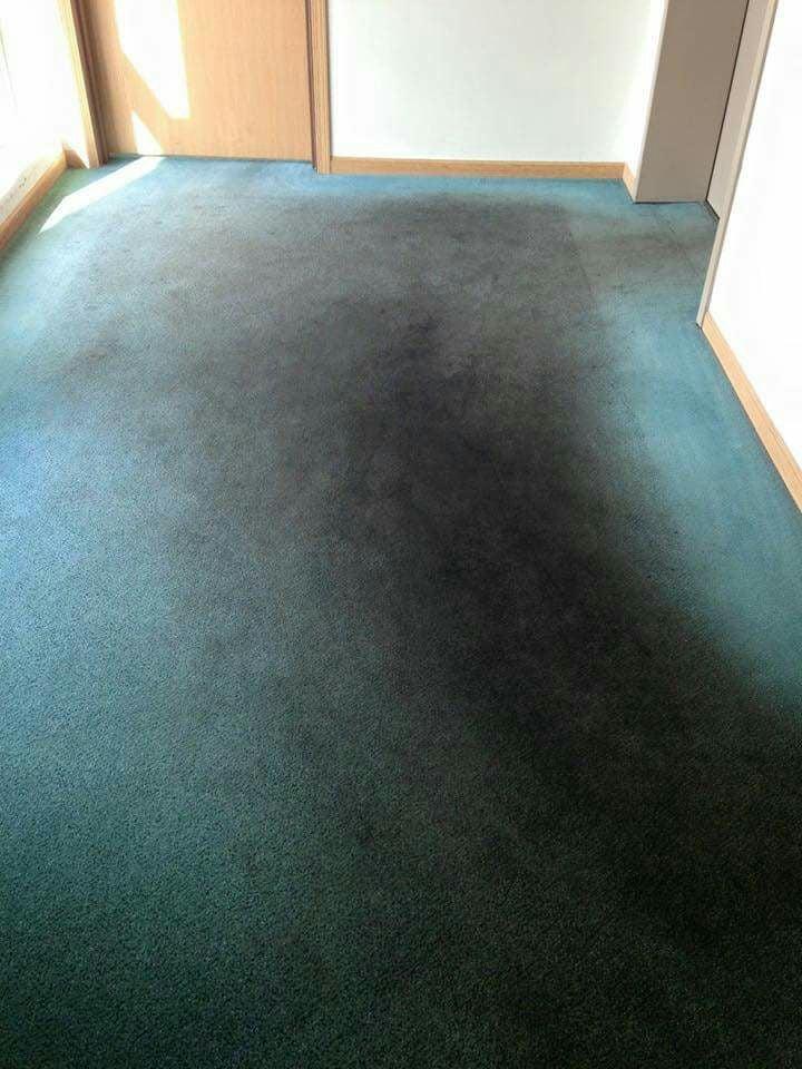 Oxi Fresh Carpet Cleaning: Spanish Fork, UT