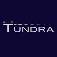 Blue Tundra Software LLC