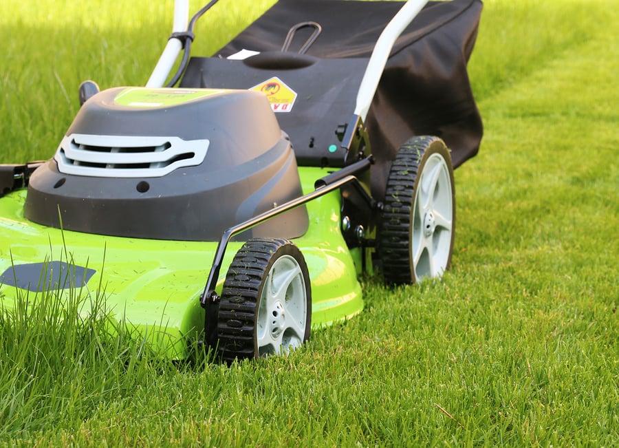 Am Lawn Service: Cibolo, TX