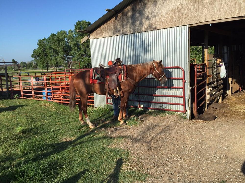 Horse Training: 7579 Ayrshire Rd, Mannford, OK