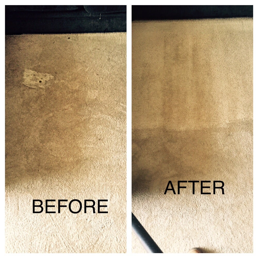 Even wear and heavy traffic stains are always cleanable ...