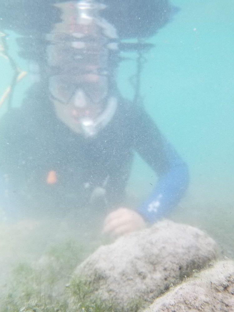 Divers Inc -White Star Quarry: 895 S Main St, Gibsonburg, OH