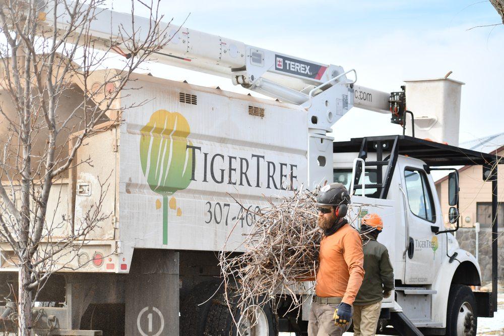 TigerTree: 110 Howe Rd, Laramie, WY