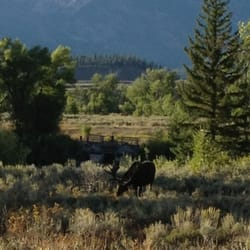 Photo Of Dornan S Spur Ranch Cabins Moose Wy United States Come