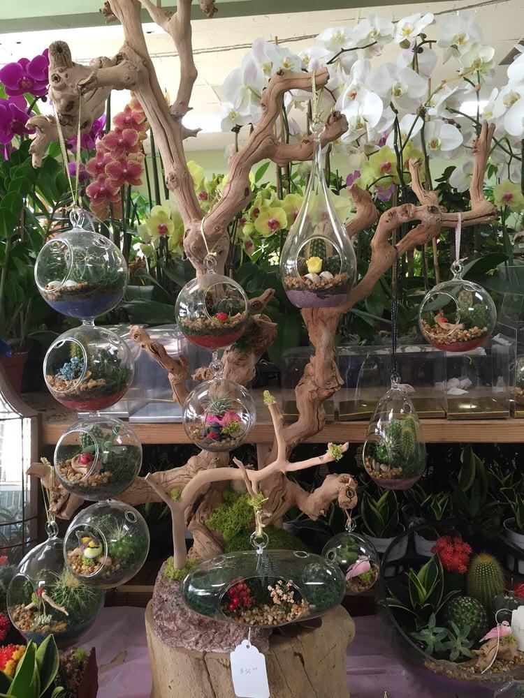 gg florist florists 9710 garden grove blvd garden grove ca phone number yelp