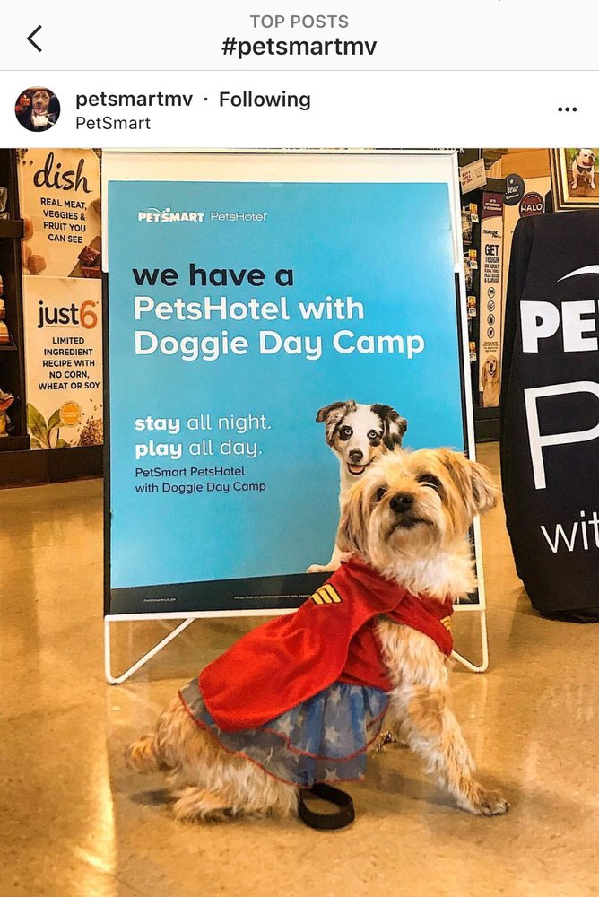 PetSmart: 2440 E Charleston Rd, Mountain View, CA