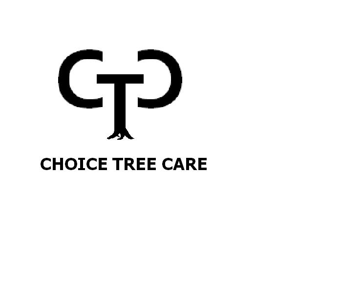 Choice Tree Care: Binghamton, NY