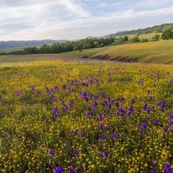 Photo Of California Outdoor Properties Vacaville Ca United States Cortina Ridge Ranches