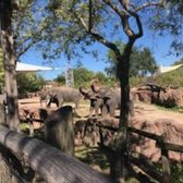 Photo Of Busch Gardens   Tampa, FL, United States. They Have Interactive  Experiences