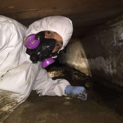 Photo of Go Green Restoration - Los Angeles, CA, United States. Water Damage Restoration Repair