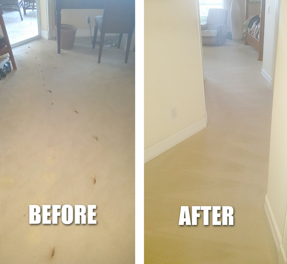 Eco-Green Cleaning Solutions: 14803 Sutherland Ave, Naples, FL
