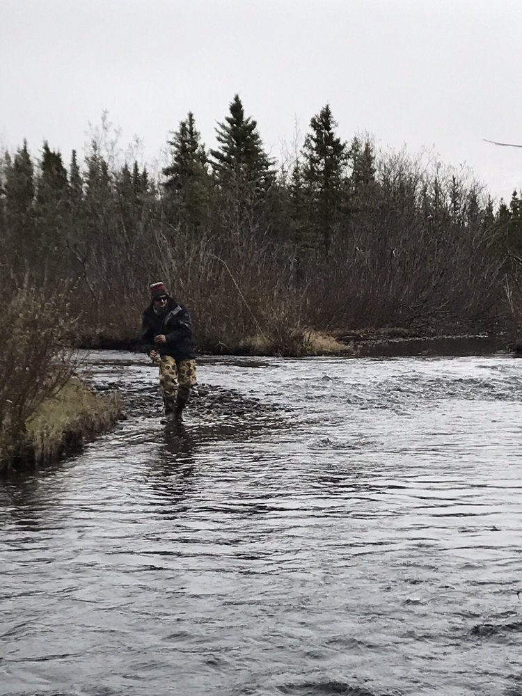 Denali Fly Fishing Guides: MP 215 Park Hwy, Cantwell, AK