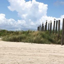 Photo Of Sunny Beach Galveston Tx United States Seagulls