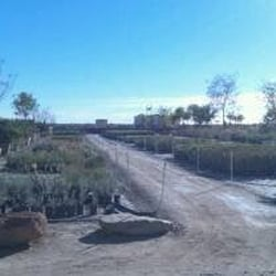 Photo Of Yuma Nursery Supply Az United States