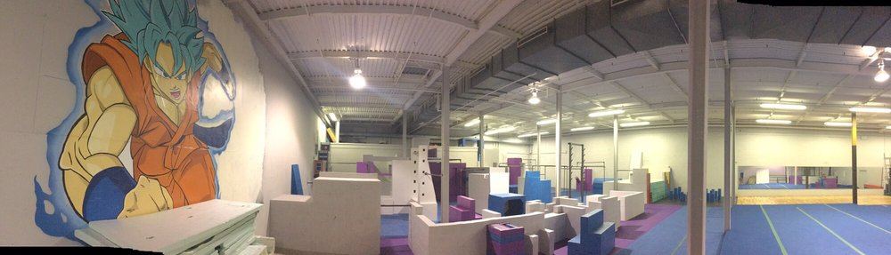 Pinnacle Parkour Academy - Philadelphia