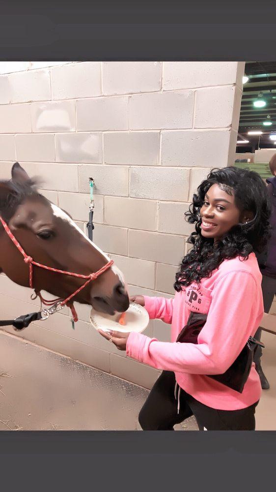 Little Creek Horse Farm: 2057 Lawrenceville Hwy, Decatur, GA