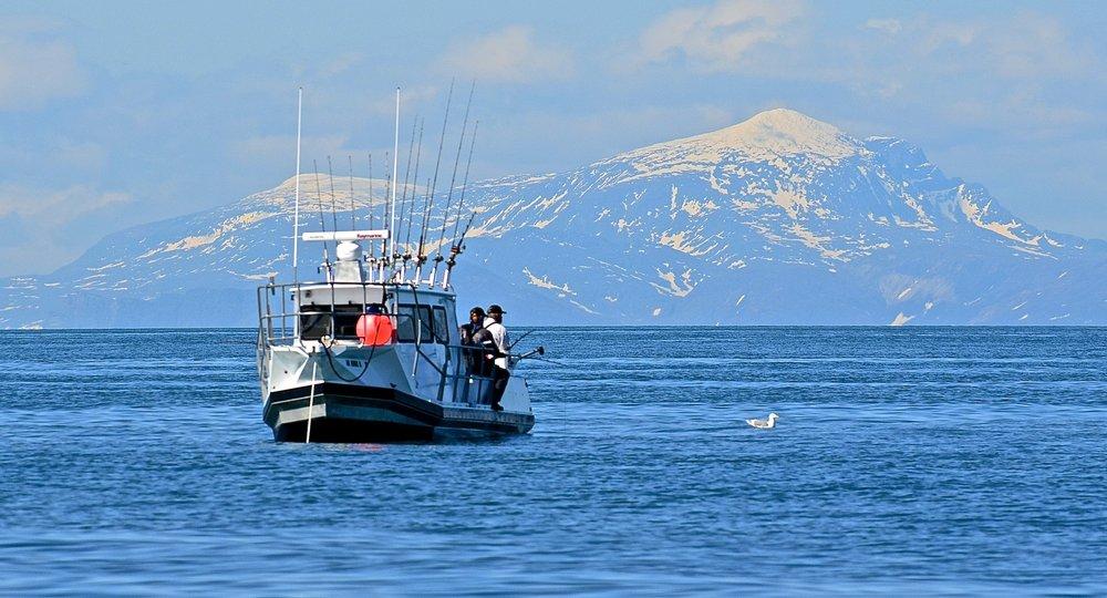 Deep Creek Fishing Club: 67480 Halibut Rd, Ninilchik, AK