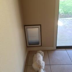 Photo of Doggie Doors On The Run - Goodyear AZ United States. & Doggie Doors On The Run - 46 Photos - Pet Services - 17645 W Polaris ...