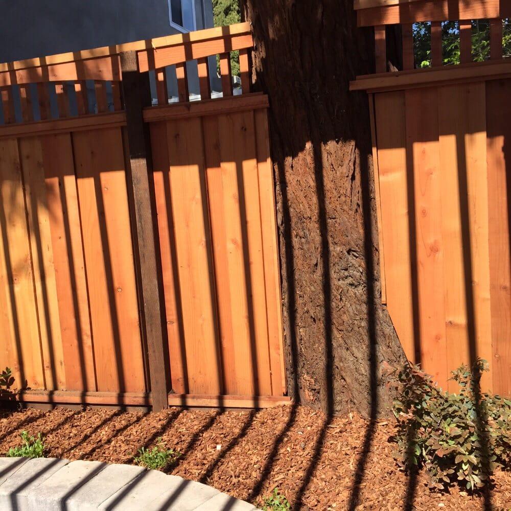 Affordable Landscape And Design San Jose Ca
