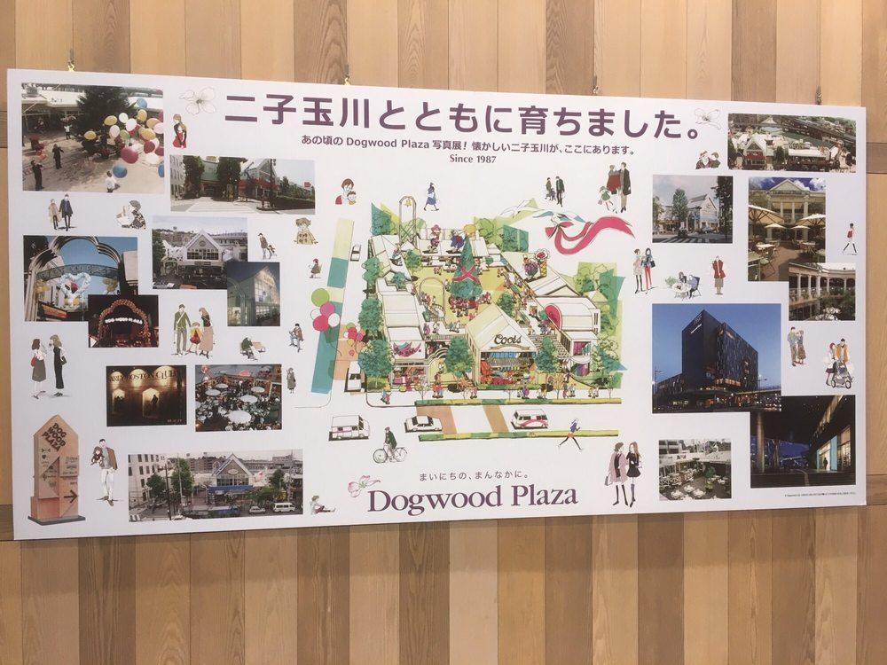 Dogwood Plaza