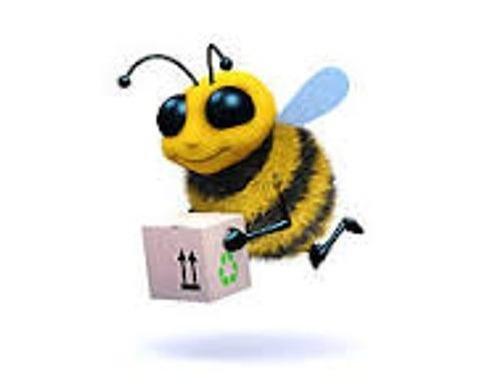 Busy Bee Movers: Rotterdam, NY