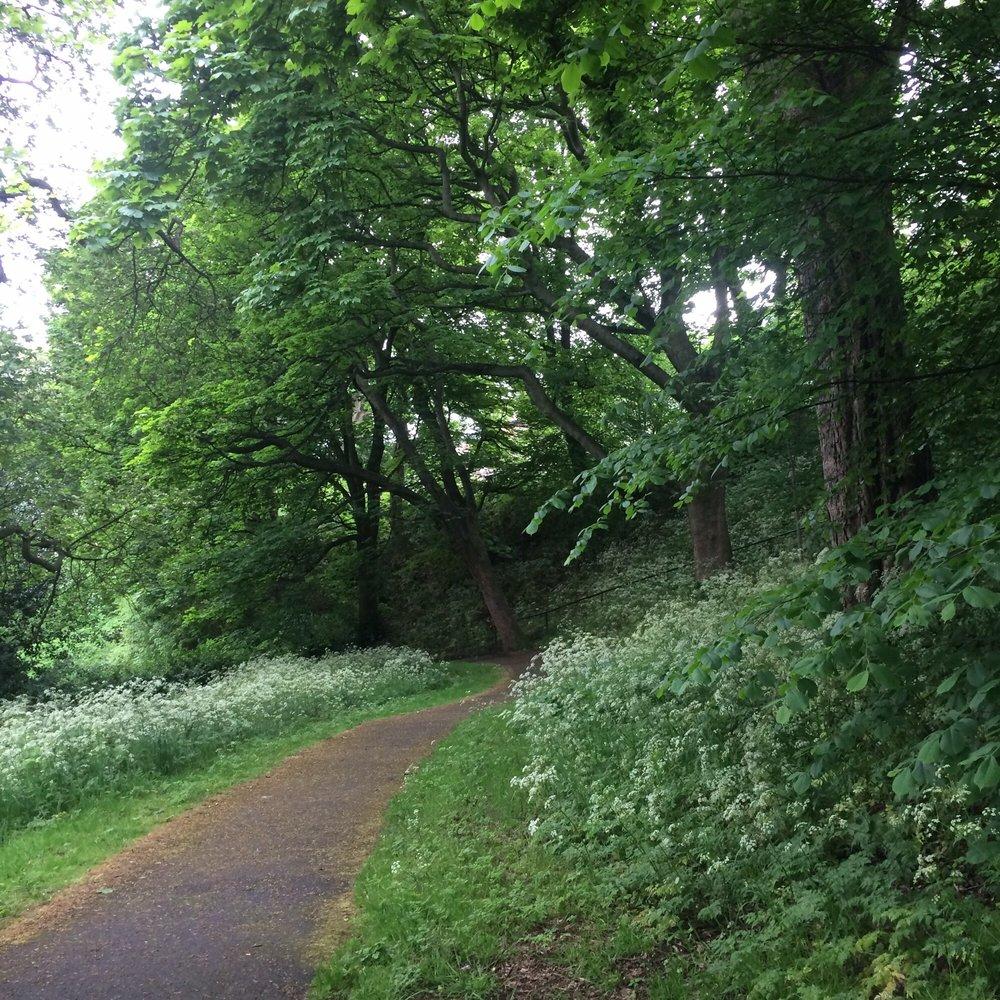London Road Gardens Park Forests Royal Ter Edinburgh United Kingdom Yelp
