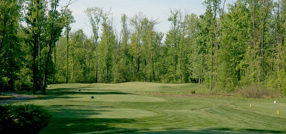 Cumberland Trail Golf Club: 8244 Columbia Rd SW, Pataskala, OH