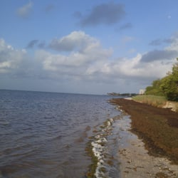 Photo Of Coco Plum Beach Marathon Fl United States Lots Seaweed