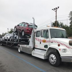 Same Day Auto >> Same Day Auto Transport 24 Photos Vehicle Shipping