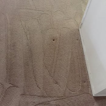 photo of spitz carpet cleaning los angeles ca united states after cleaning